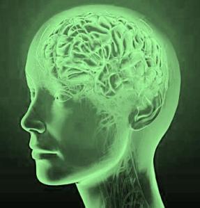 13060b 31919_206007367_1-Clinical-Psychologist-Psychotherapist-at-Lucknow-Indira-Nagar-Colony