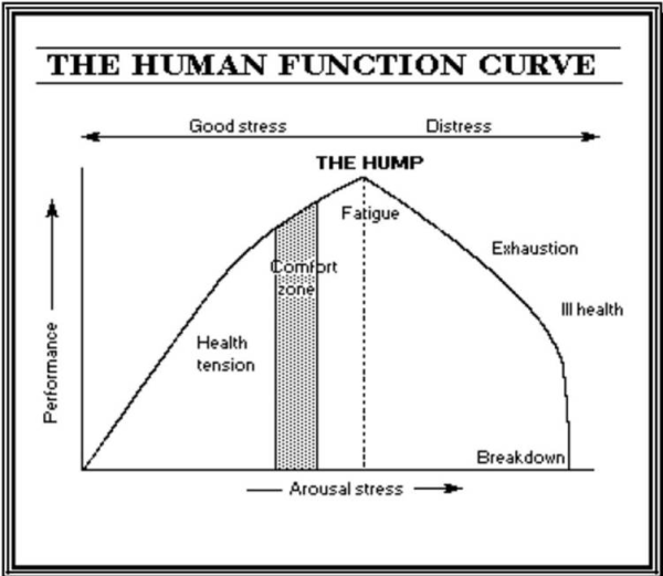 human-function-curve